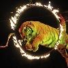 Цирки в Загорске